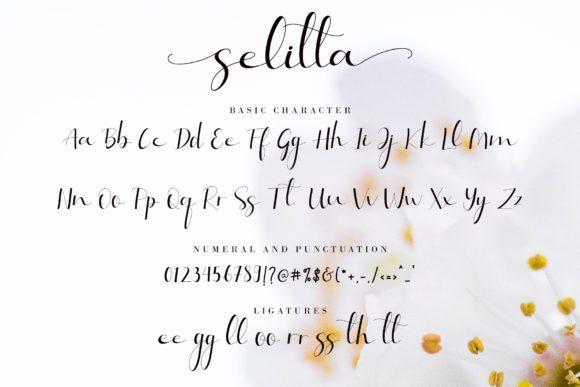 Selitta-Font-3