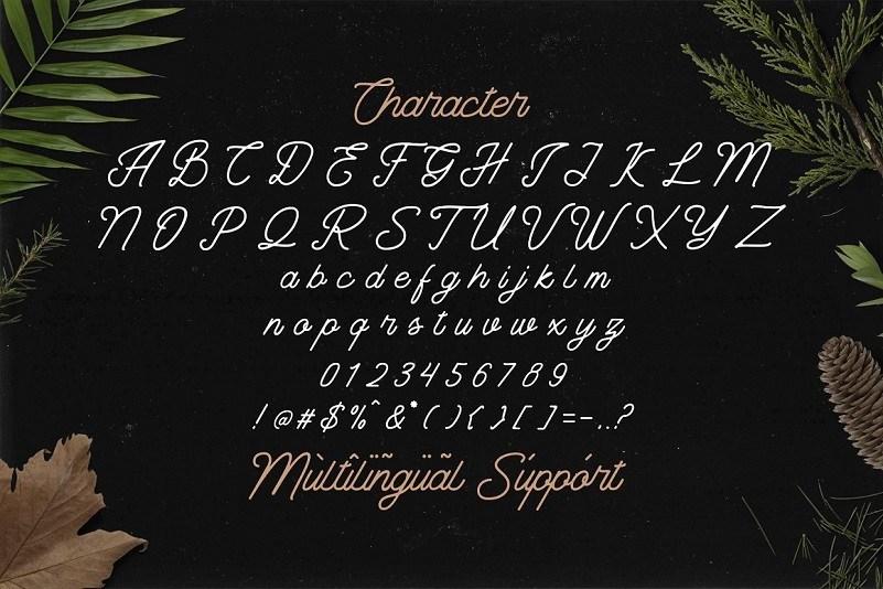 The-Banten-Monoline-Script-Font-3