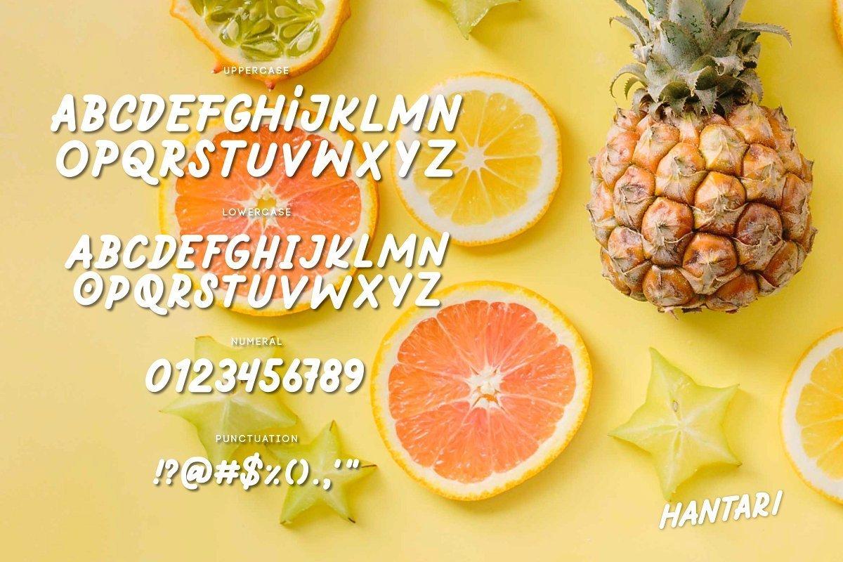 Hantari-Sans-Serif-Font-4