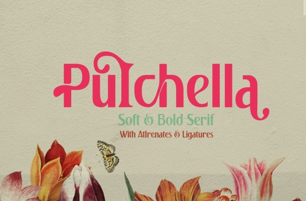 Pulchella Soft & Bold Sans Font