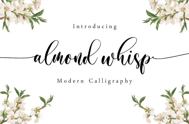 Almond Whisp Modern Calligraphy Font