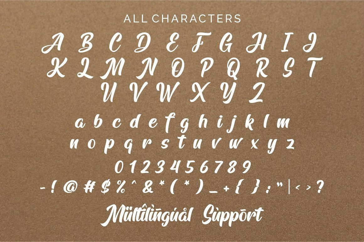 Arfelick-Feather-Handmade-Script-Font-4