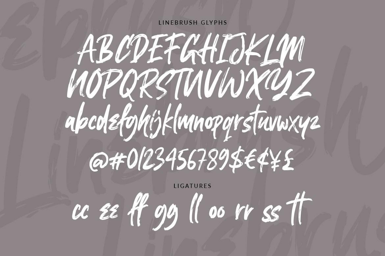 Linebrush-Rough-Brush-Script-Font-3