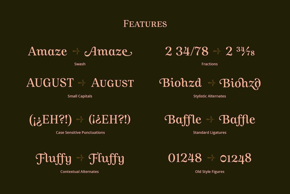Allust-Serif-Typeface-3