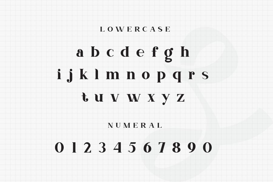 Nevada-Bold-Slab-Serif-Typeface-4