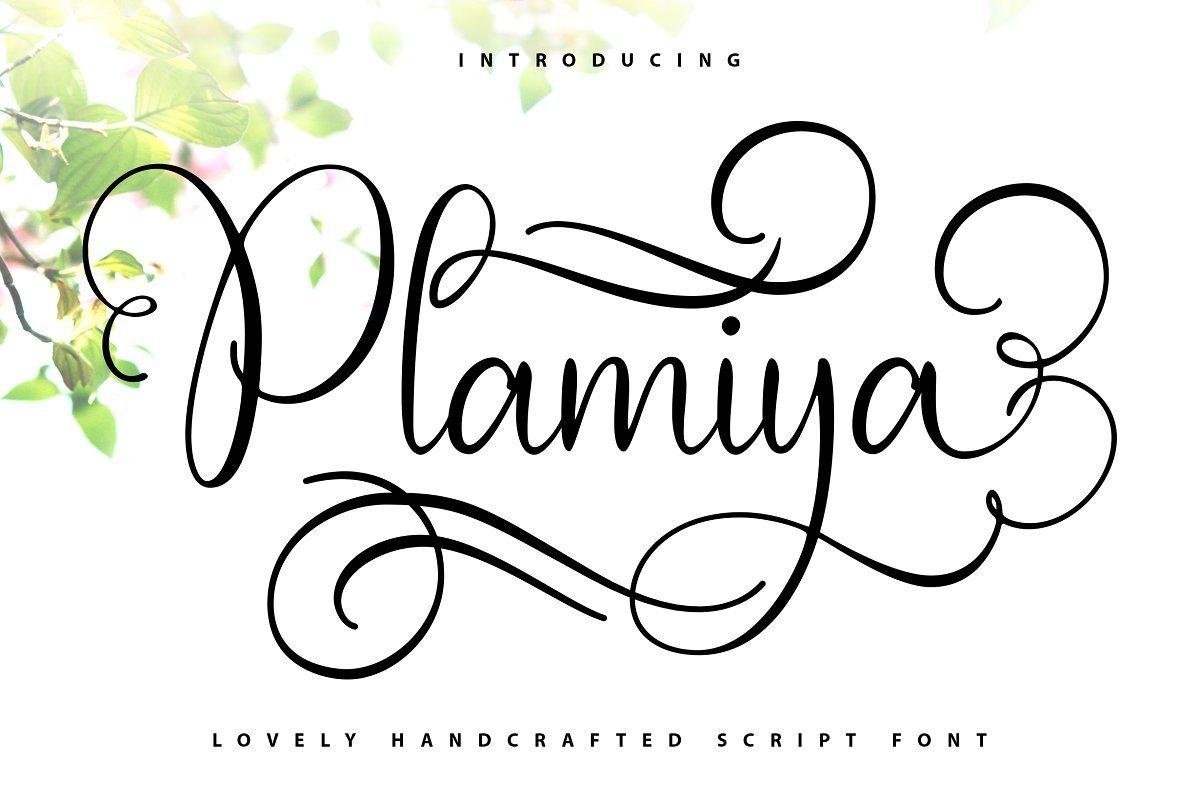 Plamiya-Font-1