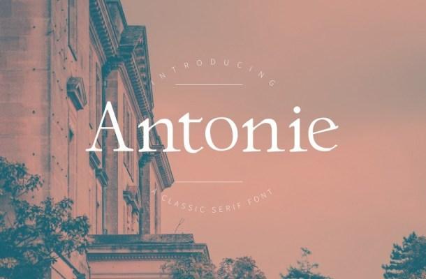 Antonie Classic Serif Font