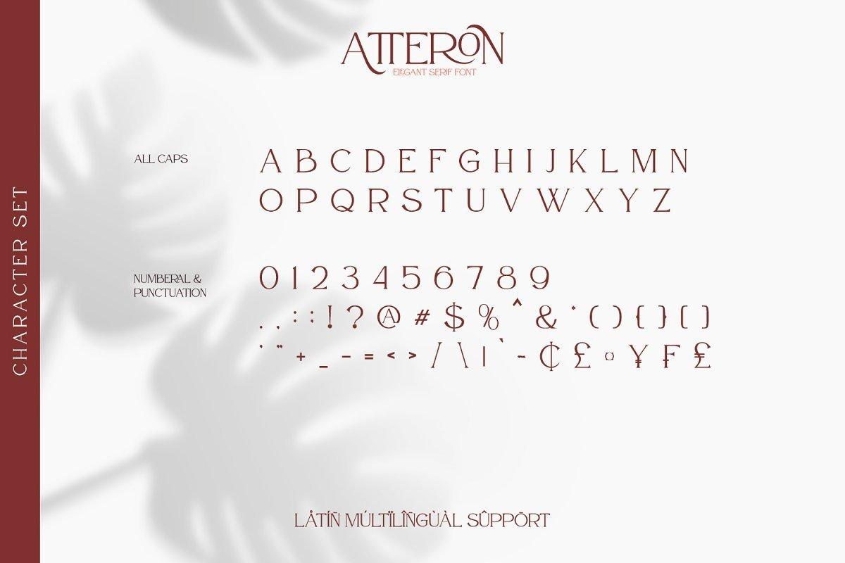 Atteron-Elegant-Serif-Typeface-3