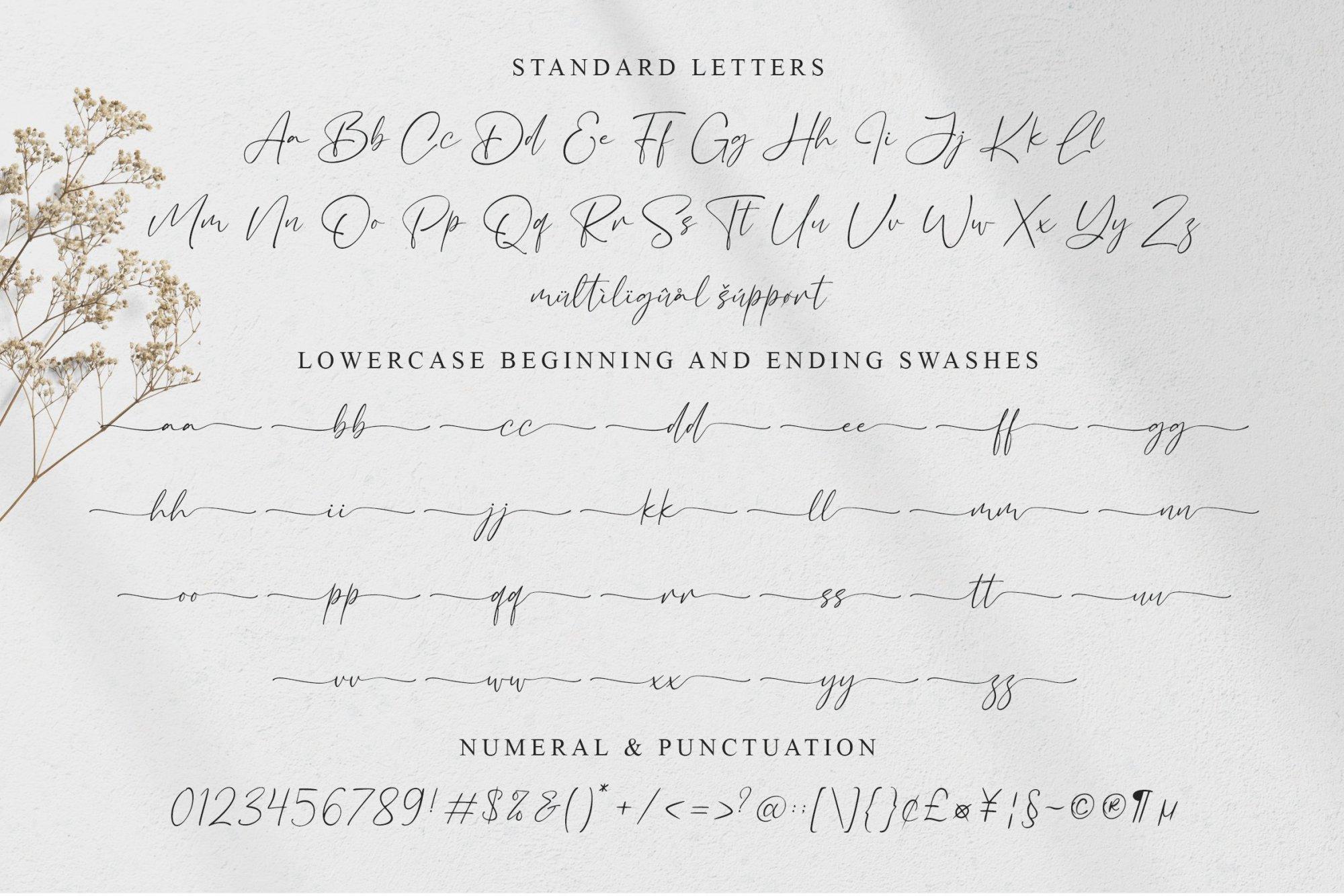Bacalisties-Handwritten-Script-Font-3