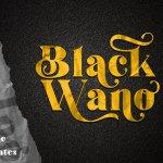 Black Wano Serif Typeface