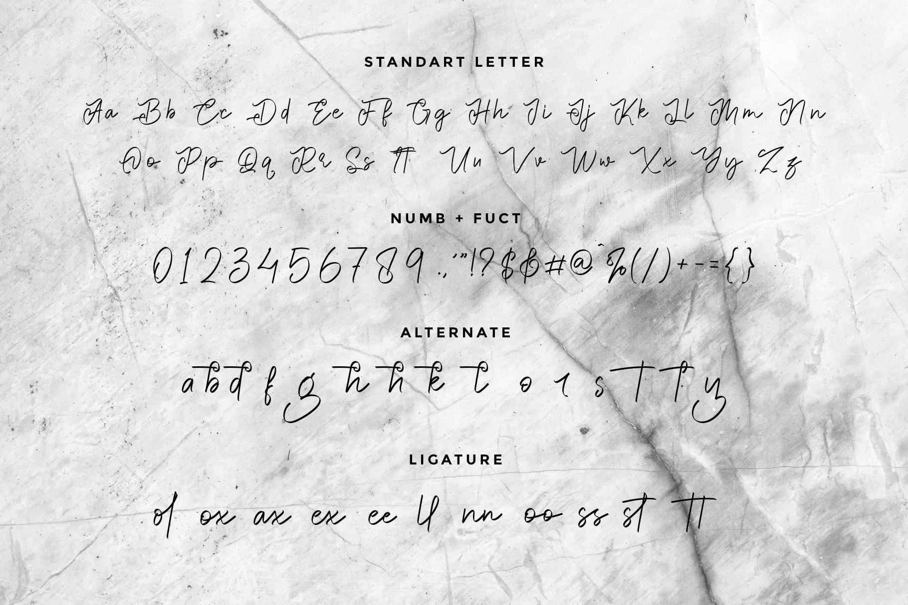 Bright-Hoston-Handwritten-Script-Font-3