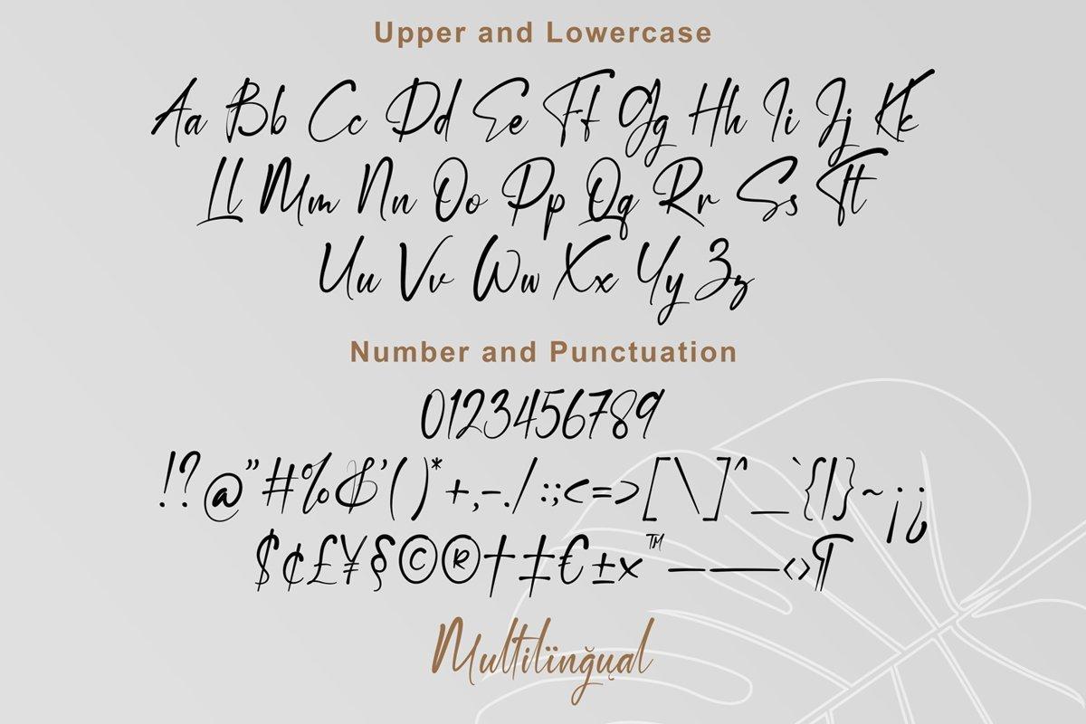 Destoria-Handwritten-Script-Font-3