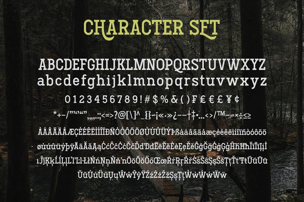Hodgeson-Calligraphy-Slab-Serif-Font-3