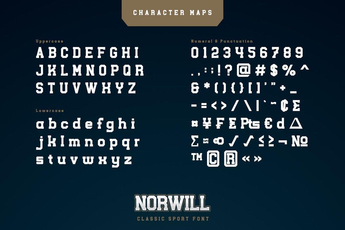 Norwill-Classic-Sport-Display-Font-3