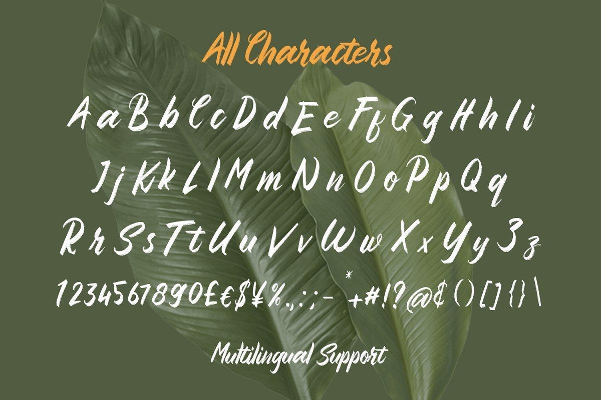 Sembilu-Brush-Script-Typeface-3