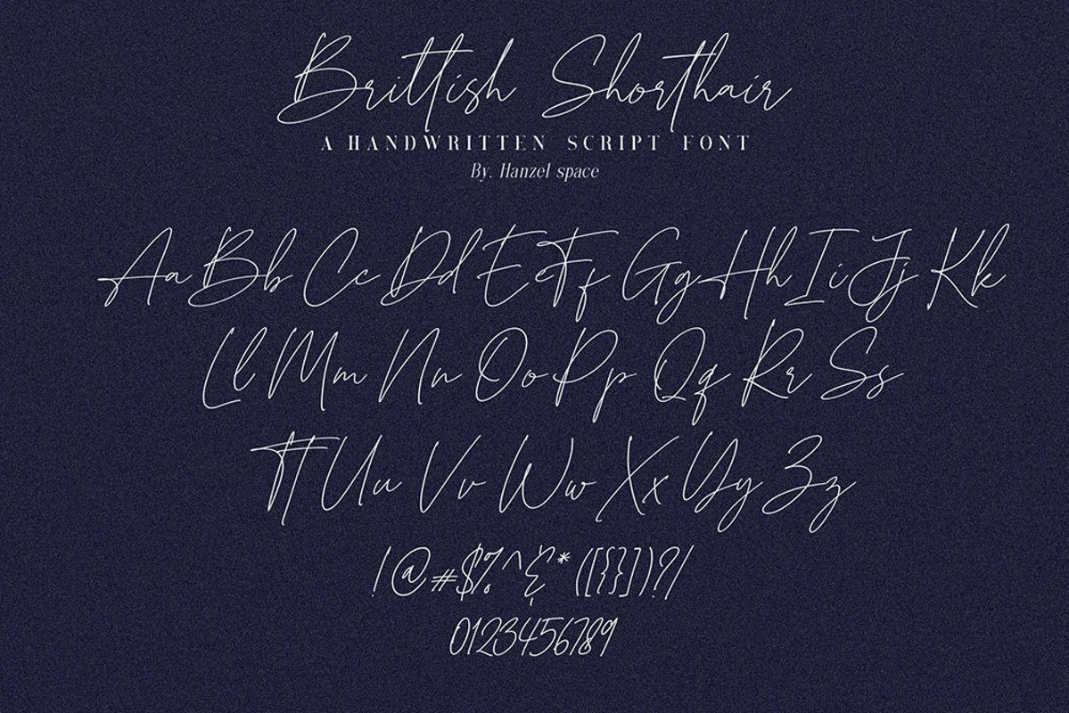 Brittish-Sorthair-Font-2
