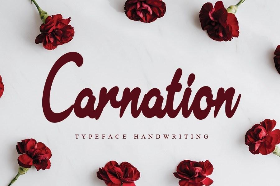 Carnation-Font