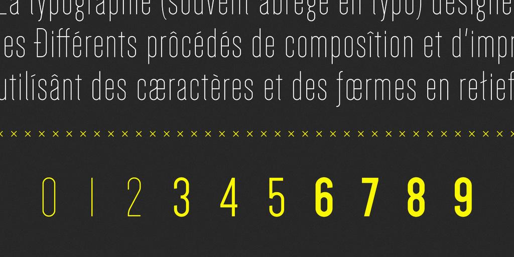 Dense-Font-3