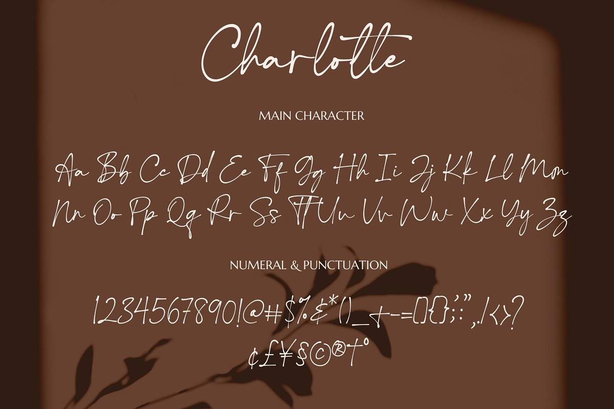 Charlotte-Font-3
