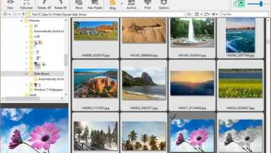 2019 Download FocusOn Image Viewer 1.9 - Best Photo Editing Software