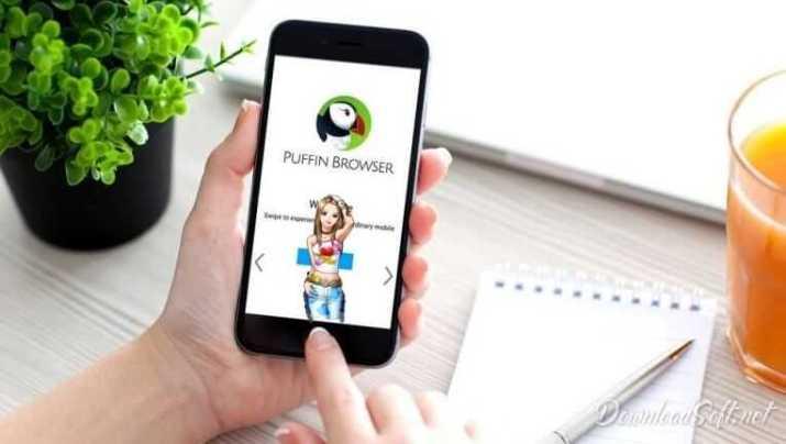 Baixar Puffin Browser Mais Segura de Navegar Grátis