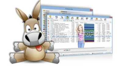 Photo of Download eMule Free Share Multimedia Files and Documents