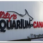 Ripley's Aquarium of Canada a #MustSee in #Toronto #Travel