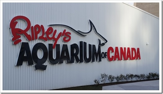 Ripley's Aquarium of Canada Wordless Wednesday DownshiftingPRO