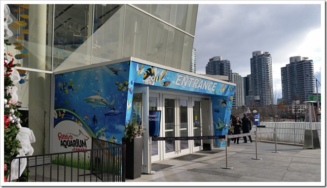 Ripley's Aquarium Canada 5 Place to Visit on March Break @DownshiftingPRO