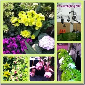 Canada Blooms @DownshiftingPRO