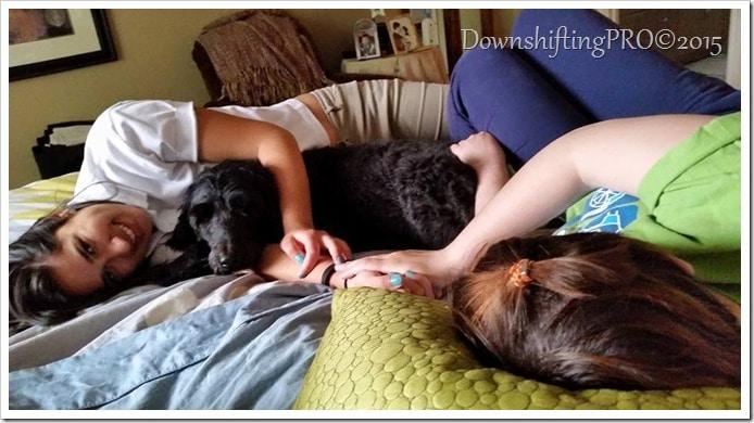 Royal Canine #ItchyPetSeeYourVet & @DownshiftingPRO