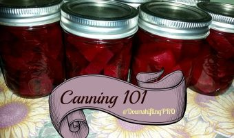 Lessons in Canning 101 – Pickled Beets #FallHarvest with @DownshiftingPRO