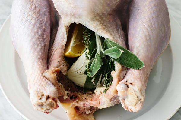 Stuffing a Thanksgiving turkey with onions, herbs, and lemon