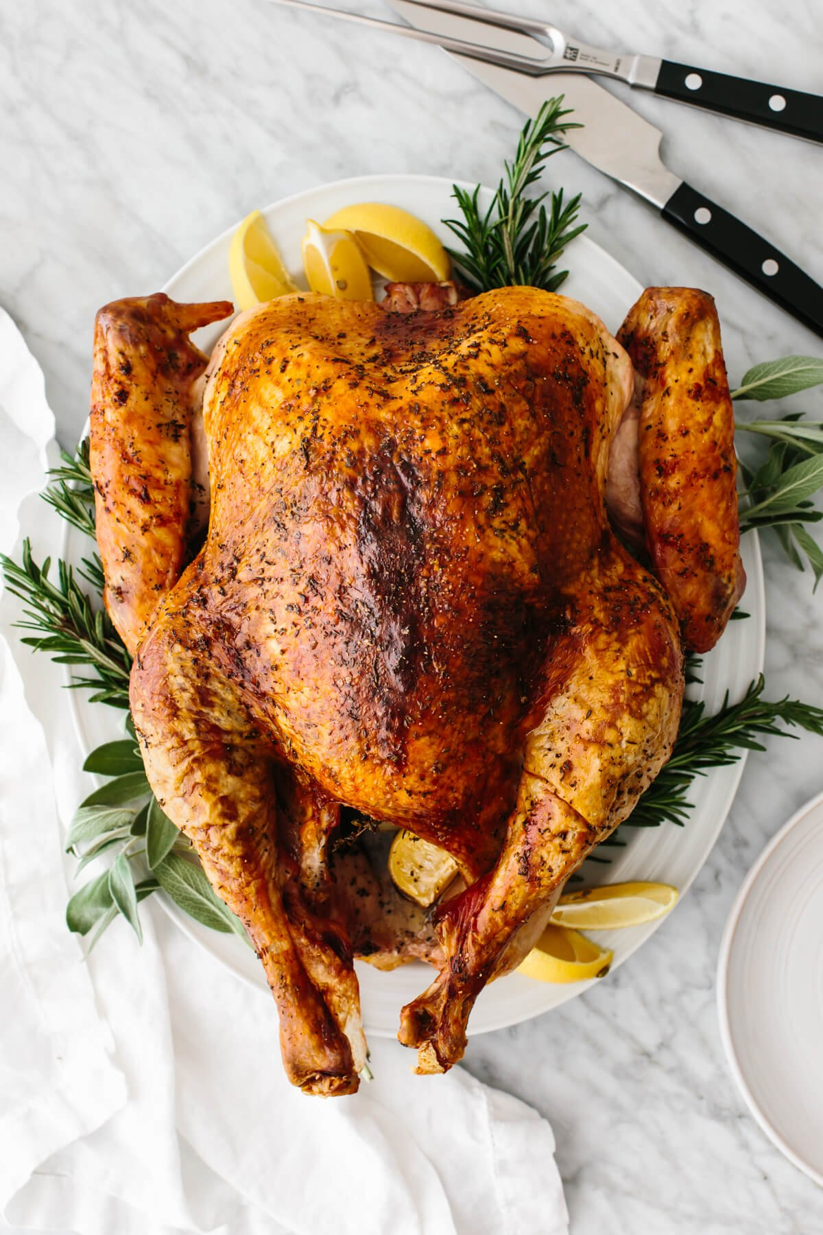 Roasted Thanksgiving turkey on a plate.