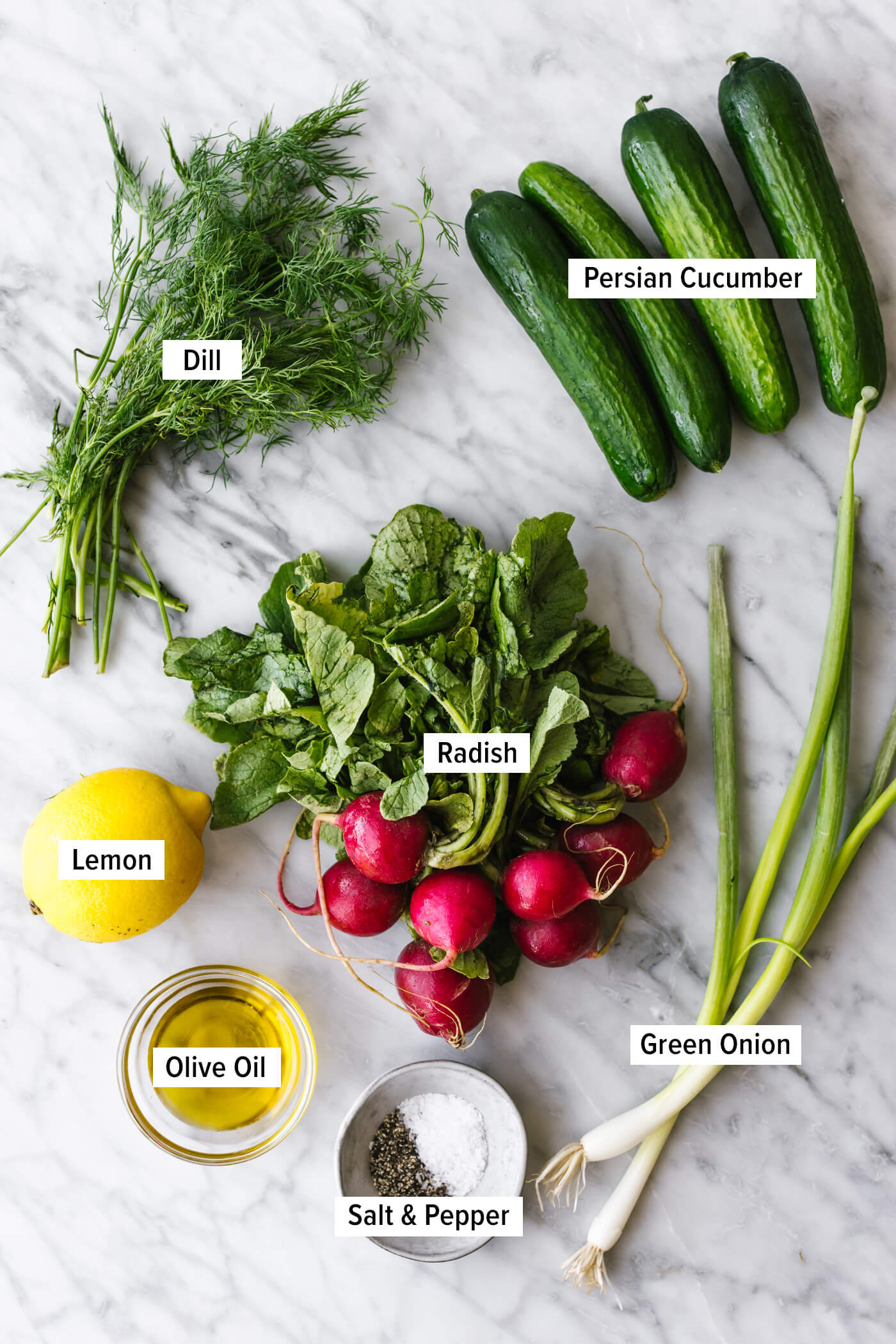 Ingredients for a cucumber radish salad on a table.
