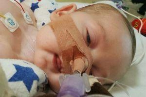 Baby Doe Redux, but even worse
