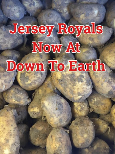 Jersey Royal Potatoes At Down To Earth Selkirk