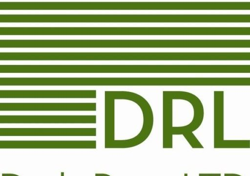 Why DRL?