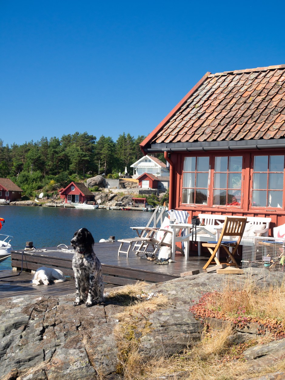 The Southern Coast (Sørlandet) + Salt Water Salmon Steaks