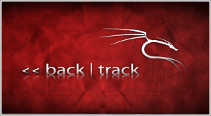 What You Can Do With BackTrack Linux