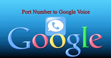 Port Number to Google Voice