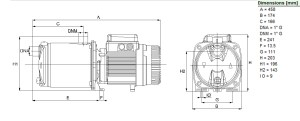DAB EUROINOX 5050M SelfPriming Multistage Centrifugal Pump  DPS Pumps