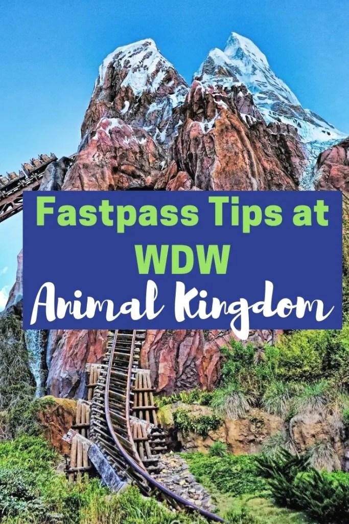 Animal Kingdom Fastpass Cover
