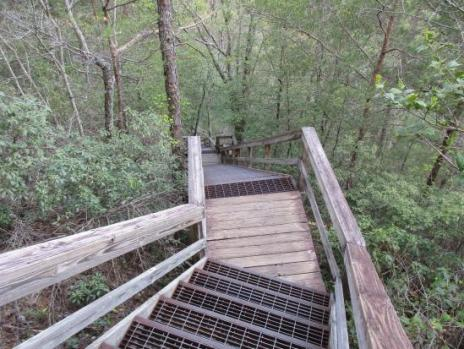 Hiking Tallulah gorge stairs