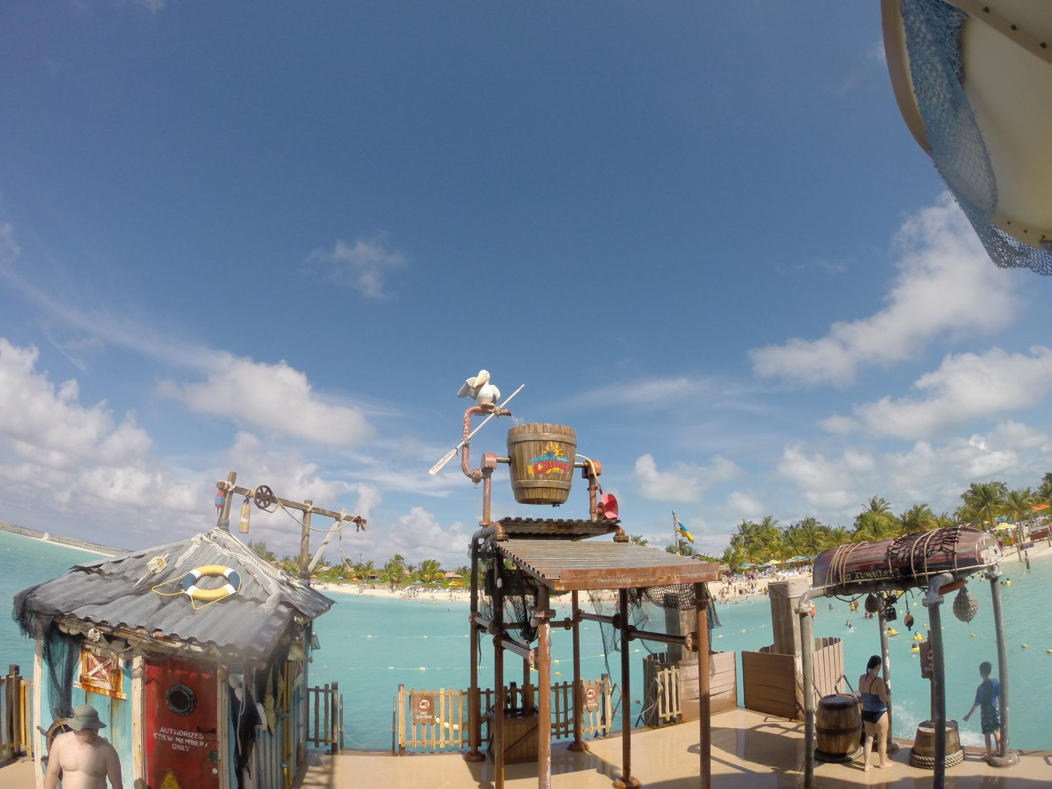Pelican Plunge Castaway Cay things to do