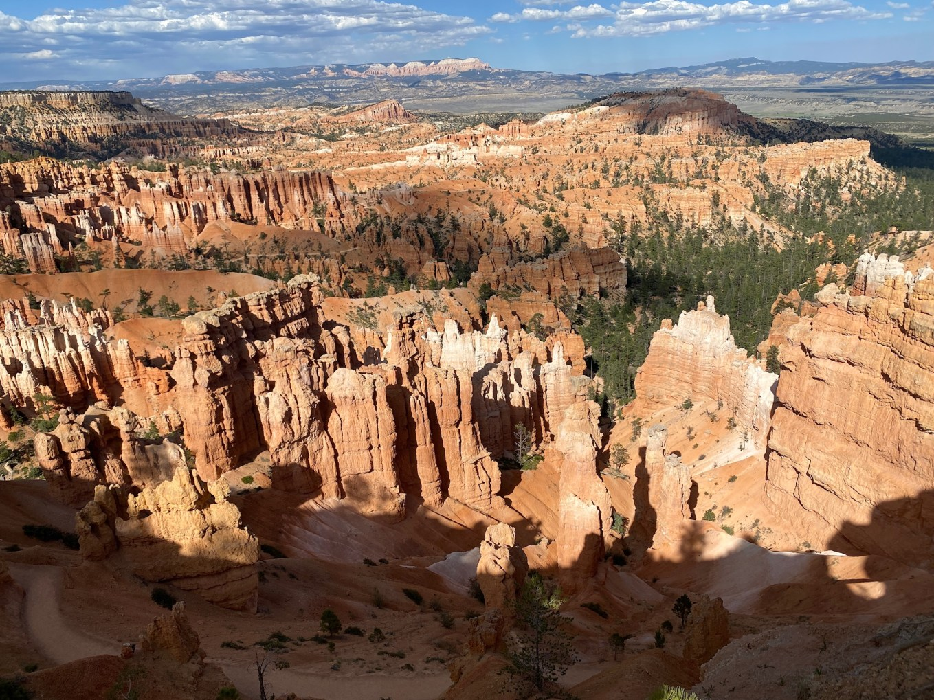 Bryce National Parks Road Trip