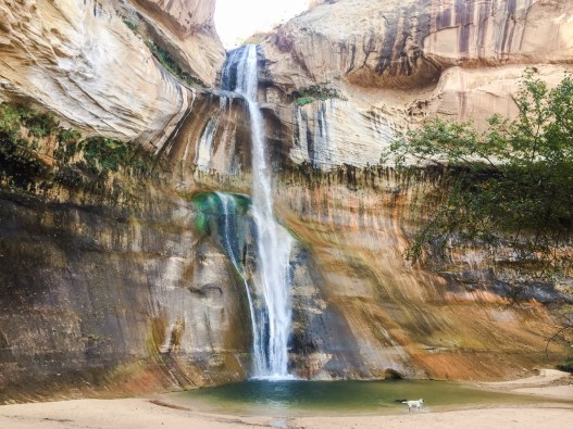 Southern Utah Hiking Calf Creek Falls