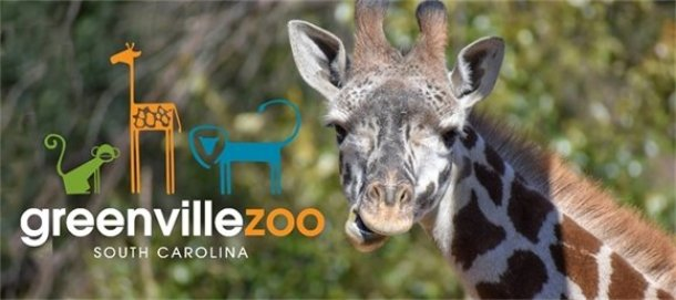 things to do with kids in Greenville Sc Zoo