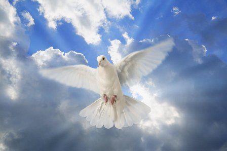 聖霊はジーザス・アンリミテッド