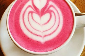 pink latte recipe, dr oz pink, latte recipe, immune system pink latte recipe